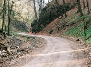 trail_350
